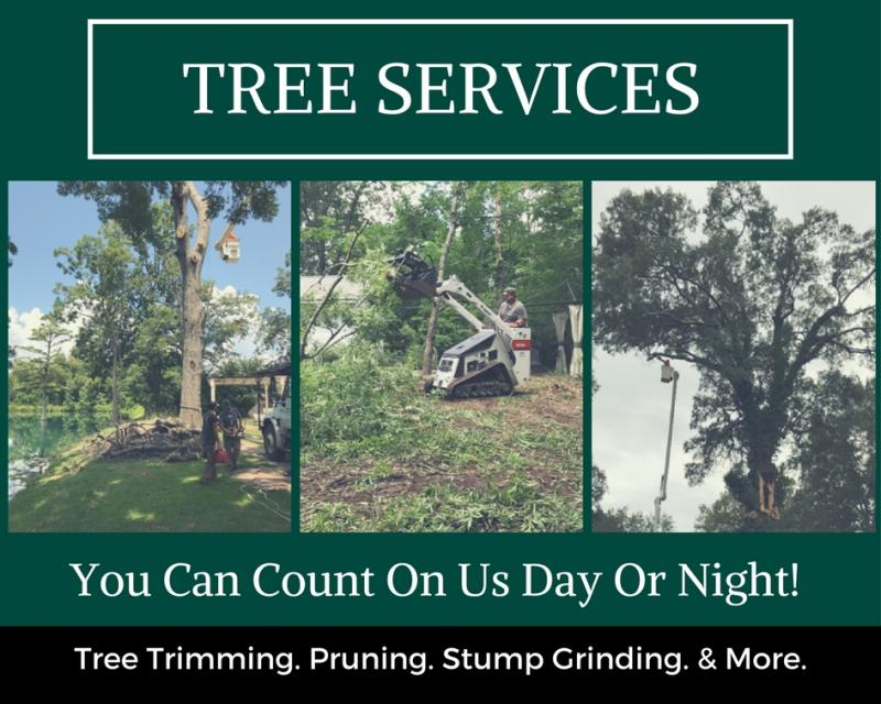 tree services we provide